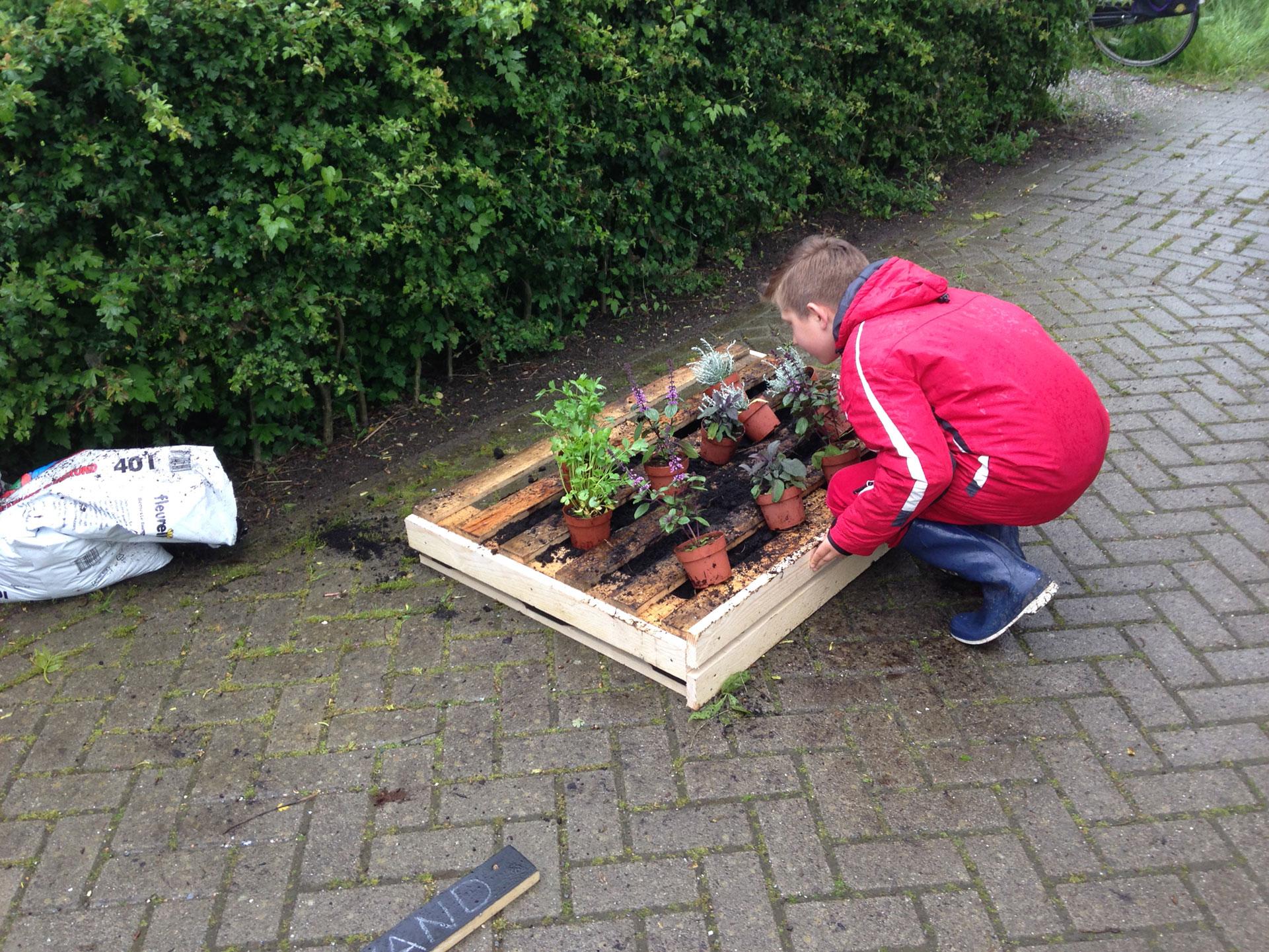 Eetbare tuin groenvorm tuinontwerp for Tuinontwerp eetbare tuin